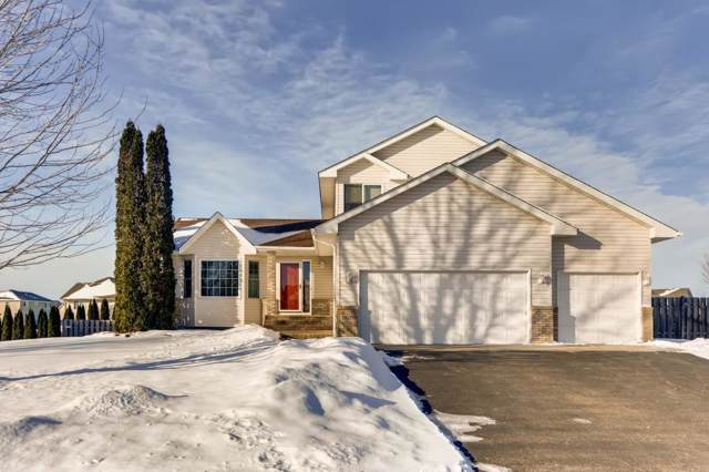 13605 Birch Road, Rogers, MN 55374 (#5353628) :: TAYLORed Realty Team