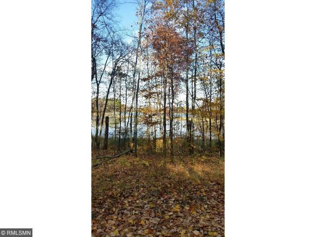 xxx Orchard, Browerville, MN 56438 (#5429677) :: Servion Realty