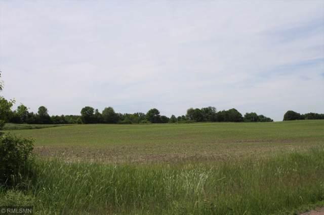 XXX-11 Eagle Ridge Circle, Pine City, MN 55063 (#5430668) :: The Sarenpa Team