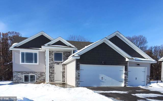 19074 Johnson Street NW, Elk River, MN 55330 (#5431756) :: TAYLORed Realty Team