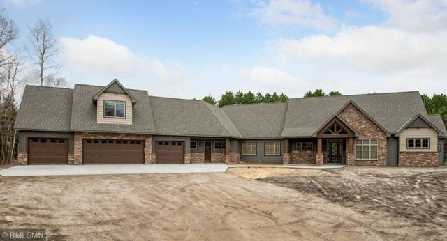 13160 96th Street NE, Otsego, MN 55330 (#5432623) :: The Sarenpa Team