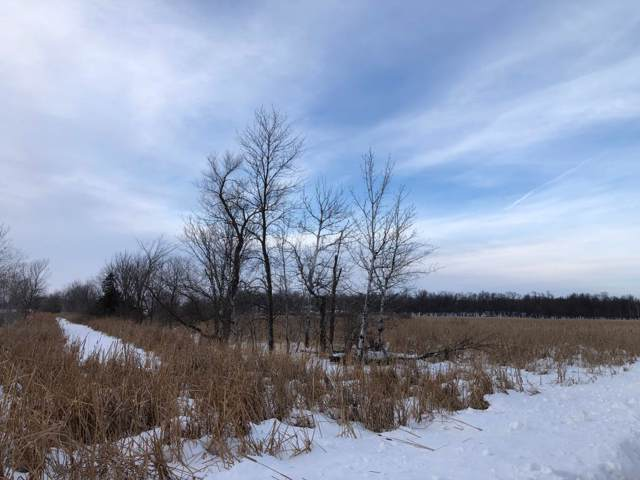 XXX 40th Street NE, Burbank Twp, MN 56312 (MLS #5433288) :: The Hergenrother Realty Group