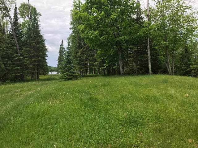 000 Horseshoe Lake Road, Grand Rapids, MN 55744 (#5433516) :: Bre Berry & Company