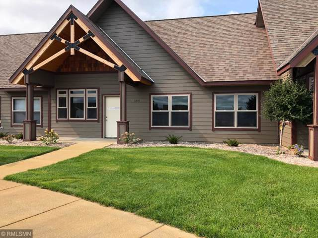 144 Colman Court, Saint Joseph, MN 56374 (#5470975) :: The Michael Kaslow Team