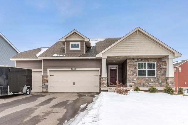 6663 Jeffery Avenue S, Cottage Grove, MN 55016 (#5471431) :: Holz Group
