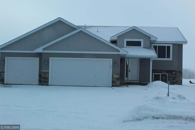 19253 Eagle Lake Road S, Big Lake, MN 55309 (MLS #5484119) :: The Hergenrother Realty Group