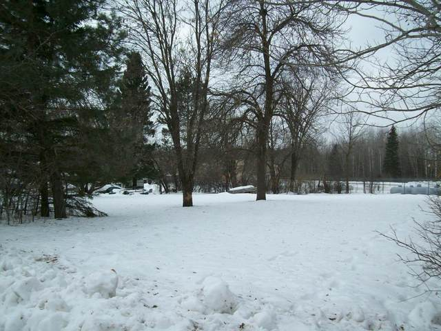 XXX Old Military Rd S., Sandstone, MN 55072 (#5486988) :: The Michael Kaslow Team