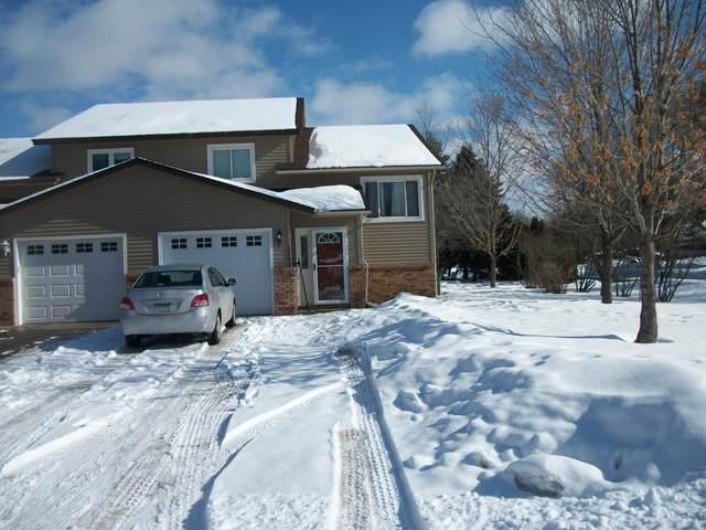 10601 Bluebird Street NW, Coon Rapids, MN 55433 (#5487347) :: The Sarenpa Team