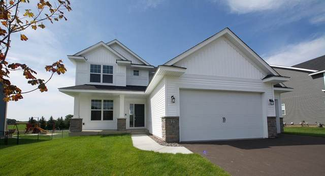 19426 Meadow View Street, Rogers, MN 55328 (#5491851) :: TAYLORed Realty Team