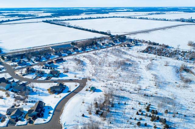8139 Whitetail Lane, Clear Lake, MN 55319 (#5498026) :: The Michael Kaslow Team