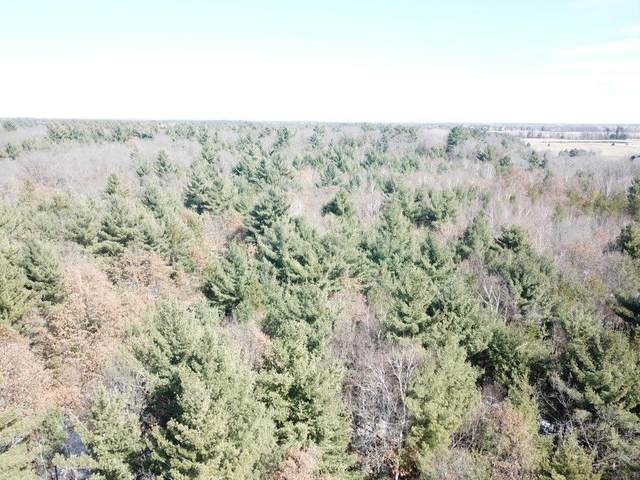 Lot 2 Centennial Street, Grantsburg, WI 54840 (#5541725) :: The Odd Couple Team