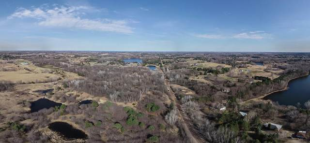 10000 110th St N, Grant, MN 55082 (#5542306) :: Holz Group