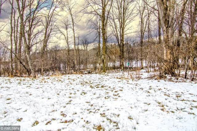 W985 Red Fox Run, Spring Valley, WI 54767 (MLS #5544030) :: The Hergenrother Realty Group