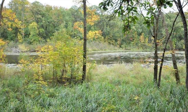29084 Voyagers Pass, Pequot Lakes, MN 56472 (#5547087) :: The Michael Kaslow Team