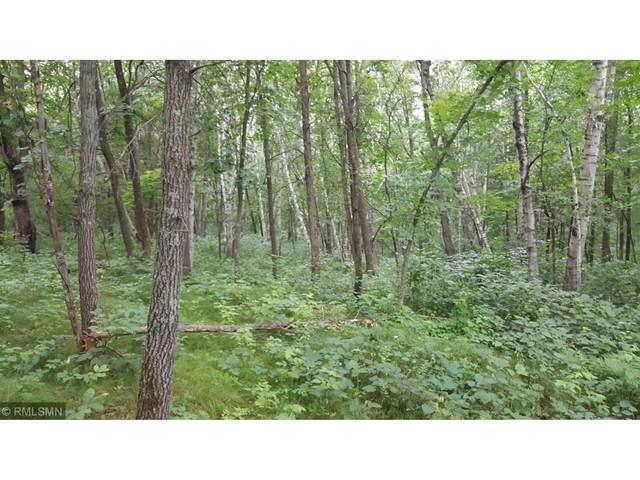 XXX Riverside Drive, Brainerd, MN 56401 (#5547344) :: Holz Group