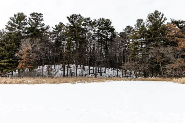 TBD Round Lake Court, Osceola, WI 54020 (#5551319) :: The Odd Couple Team