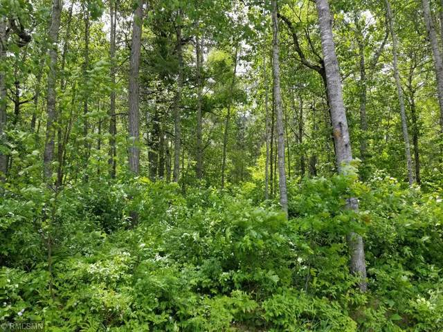 Lot 14 Redstone Trail, Pequot Lakes, MN 56472 (#5551908) :: Bre Berry & Company