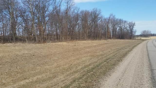 x State Highway 29 N, Parkers Prairie, MN 56361 (#5553685) :: Servion Realty