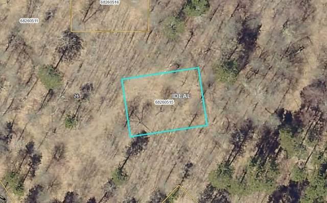 L5, B1 Idyllwood Boulevard, Pequot Lakes, MN 56472 (#5554664) :: The Pietig Properties Group