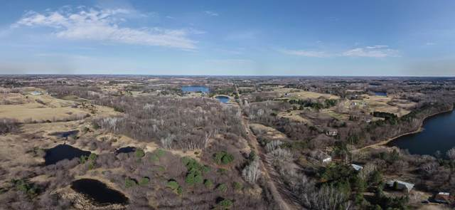9980 110th St N, Grant, MN 55082 (#5555856) :: Holz Group