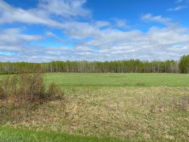 TBD State Hwy 6, Deer River, MN 56636 (#5569818) :: The Preferred Home Team