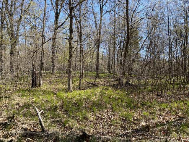 TBD Outlook Road, Browerville, MN 56438 (MLS #5570518) :: The Hergenrother Realty Group