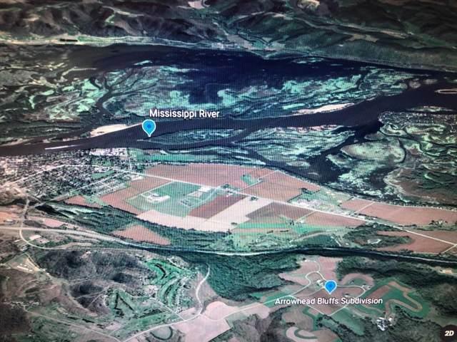 Lot 1 Blk 2 667th St, Wabasha, MN 55981 (#5571052) :: The Preferred Home Team