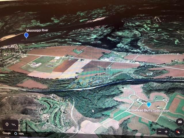Lot 10 Bl 2 667th St, Wabasha, MN 55981 (#5571062) :: Tony Farah | Coldwell Banker Realty