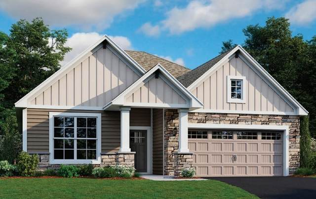 6401 Idsen Avenue S, Cottage Grove, MN 55016 (#5571640) :: Holz Group