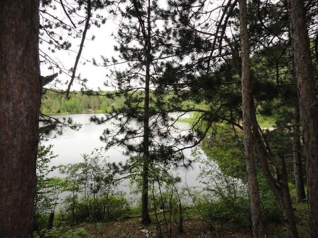 6185 Voyageurs Trail, Biwabik, MN 55708 (#5573157) :: The Odd Couple Team