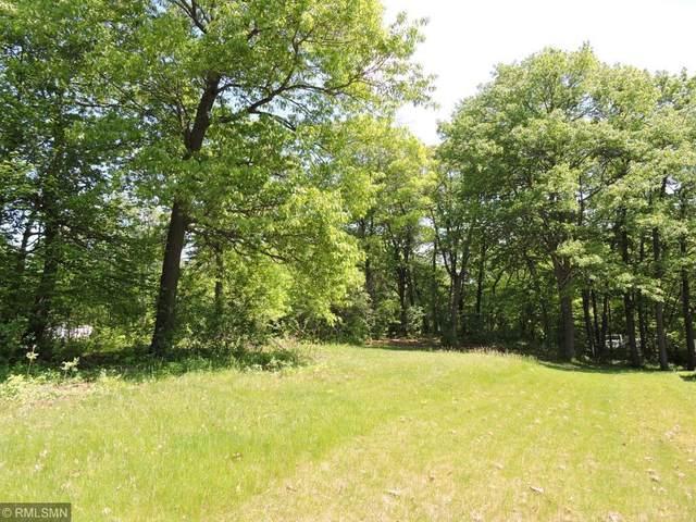 2XXX Kestrel Trail, Buffalo, MN 55313 (#5574704) :: The Odd Couple Team