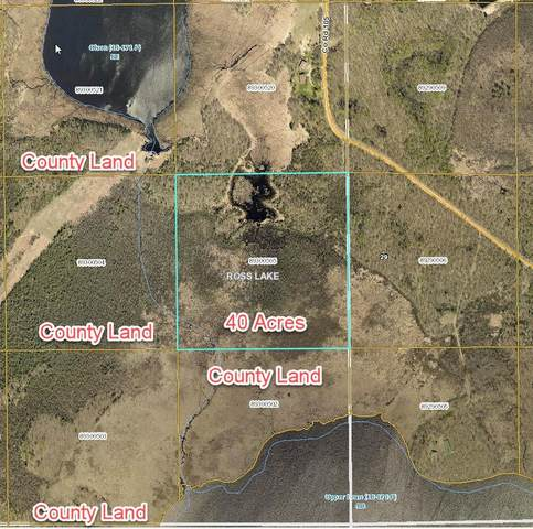 XXX County Road 105, Aitkin, MN 56431 (#5575371) :: The Michael Kaslow Team