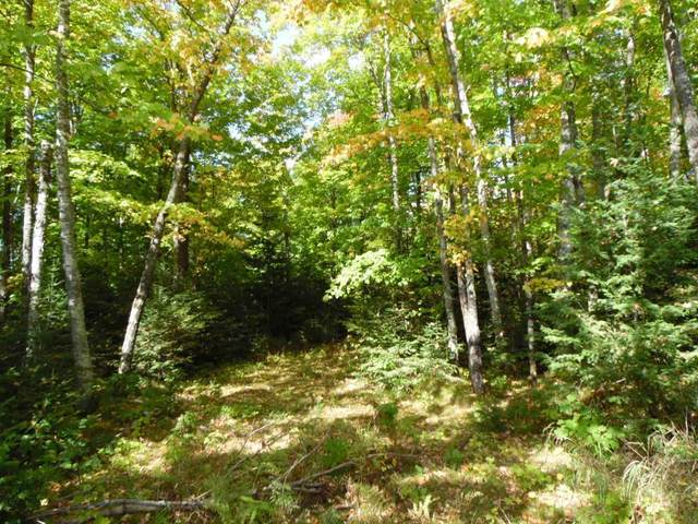 Lot 0 Pison Road, Solon Springs, WI 54873 (#5576898) :: The Janetkhan Group