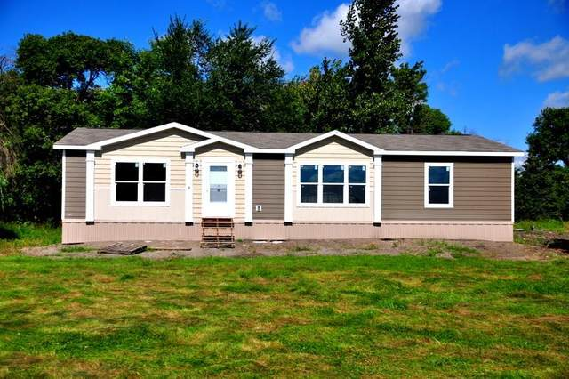 7022 580th Street, Dumont, MN 56236 (#5577660) :: Bre Berry & Company