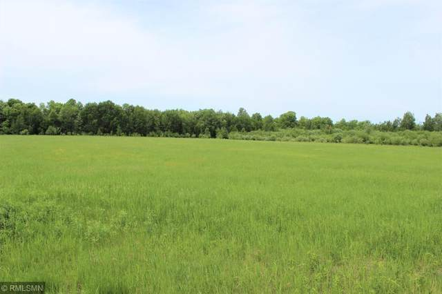 L1B1 Knick Knack Drive, Milaca, MN 56353 (MLS #5578563) :: The Hergenrother Realty Group