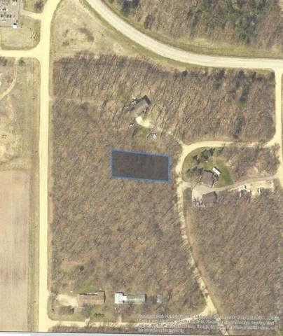 TBD Penelope Loop, Browerville, MN 56438 (MLS #5579335) :: The Hergenrother Realty Group