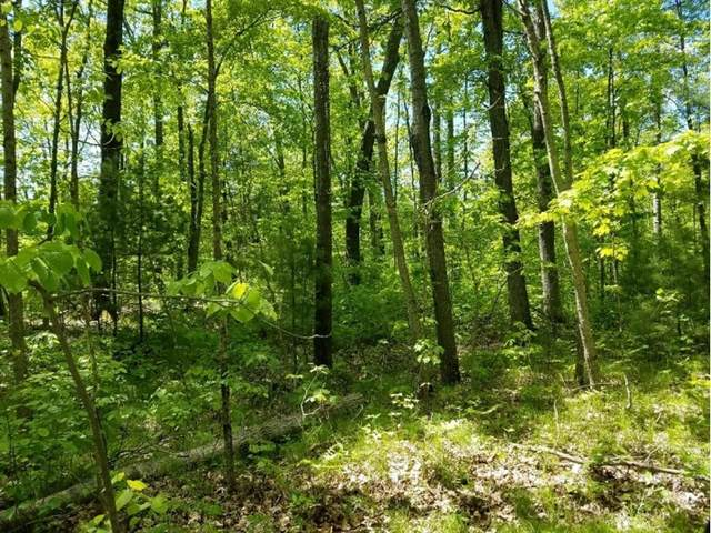 0 (Lot 2) 27th Avenue, Cumberland, WI 54829 (#5609523) :: The Janetkhan Group