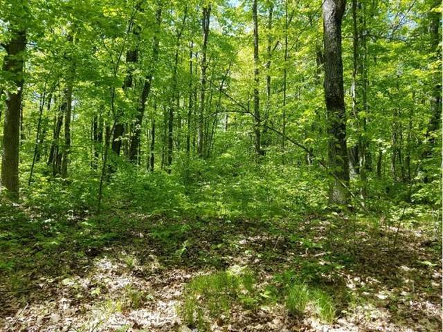 0 (Lot 3) 27th Avenue, Cumberland, WI 54829 (#5609584) :: The Janetkhan Group