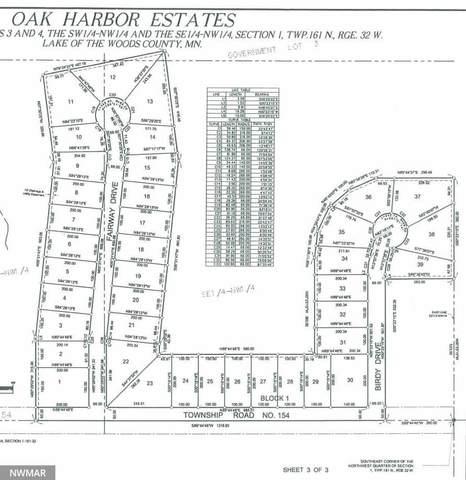 TBD Fairway Thru Birdy Drive NW, Wabanica Twp, MN 56623 (#5612746) :: The Pietig Properties Group