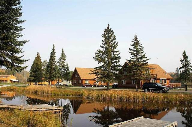 10418 Ash River Trail, Orr, MN 55771 (#5613062) :: Bos Realty Group