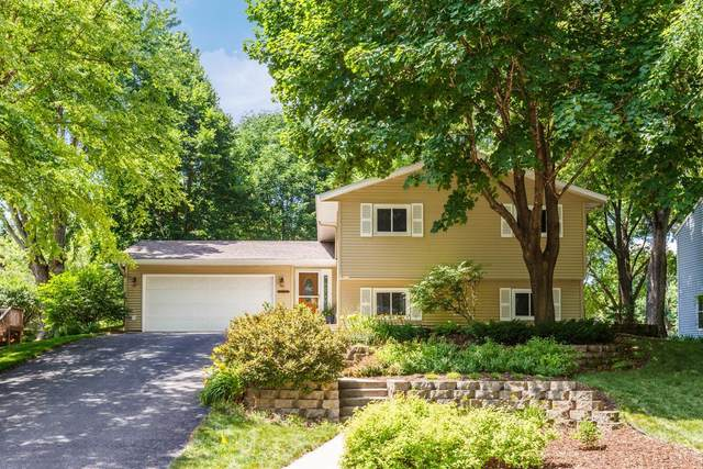112242 Hutchins Court, Chaska, MN 55318 (#5615546) :: The Janetkhan Group