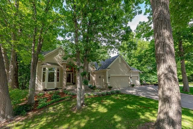 11137 Woods Trail N, Champlin, MN 55316 (#5615556) :: JP Willman Realty Twin Cities