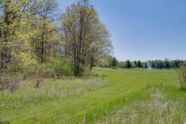 Lot 12 Eagle Drive NW, Walker, MN 56484 (#5617965) :: Straka Real Estate