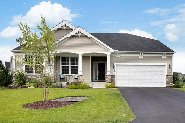 18178 56th Place N, Plymouth, MN 55446 (#5618287) :: HergGroup Northwest