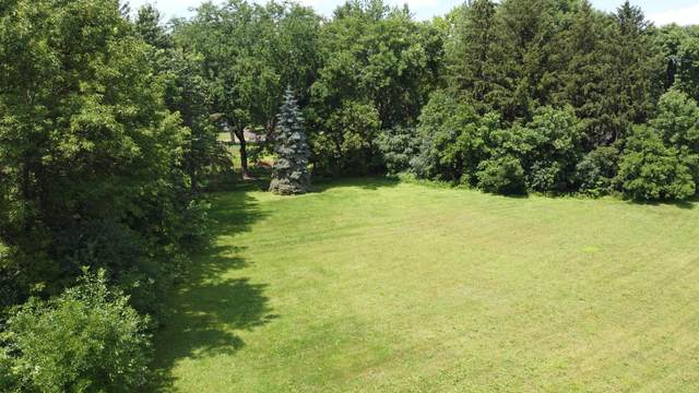 2841 Black Oaks Lane N, Plymouth, MN 55447 (#5618685) :: HergGroup Northwest
