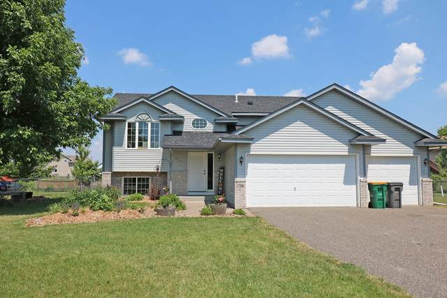 17590 309th Court, Shafer, MN 55074 (#5618948) :: Servion Realty