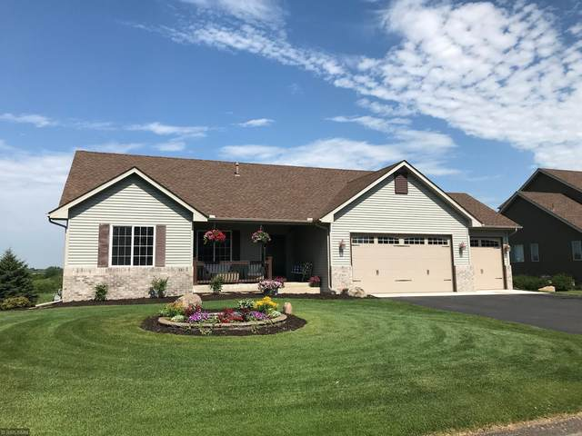21384 Queen Court NW, Elk River, MN 55330 (#5619226) :: The Odd Couple Team