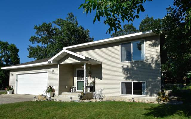 2002 Darling Avenue E, Alexandria, MN 56308 (MLS #5619909) :: The Hergenrother Realty Group