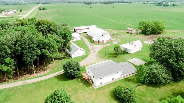 41382 County Road 153, Freeport, MN 56331 (MLS #5620804) :: The Hergenrother Realty Group