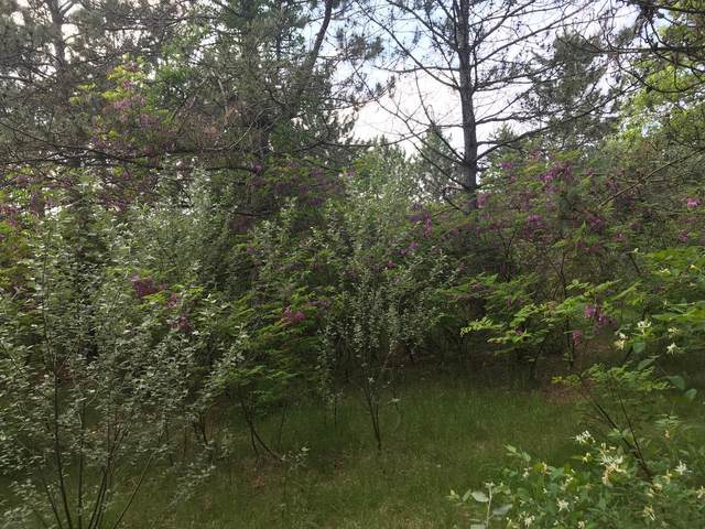 38497 Riverview Road, Pillager, MN 56473 (MLS #5621451) :: The Hergenrother Realty Group